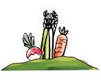 Légumes sur le Mont-Vully - La Vracrie - Epicerie en vrac - Coopérative participative au Vully (FR)